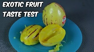 Pepino Melon Taste Test