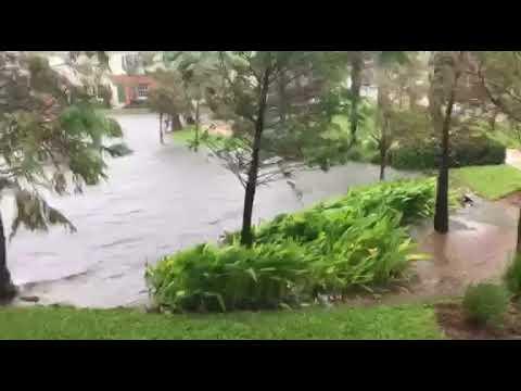 Regina woman braces Hurricane Irma in Pompano Beach, Fla