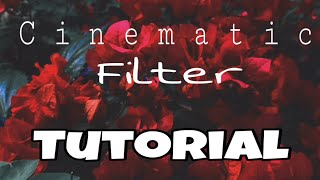Cinematic Filters Tutorial - JohnDanielVlog002 feat: Afterlight 2