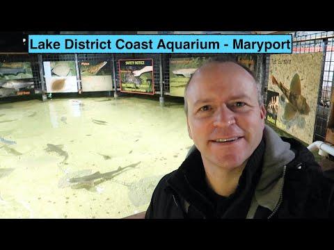 The Lake District Coast Aquarium At Maryport