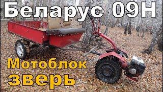 Мотоблок БЕЛАРУС 09Н / Обзор