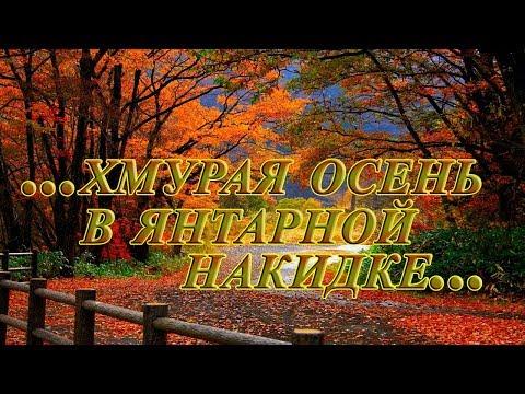 ... хмурая осень в янтарной накидке...       Валерий Капризов