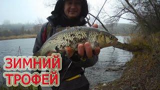 Рыбалка на щуку поймал зимний трофей на спиннинг