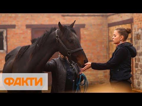 В Запорожье две женщины спасли табун лошадей из прифронтовой Авдеевки