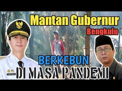 Mantan Gubernur Bengkulu  Berkebun Di Masa Corona