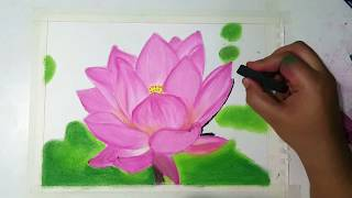 Drawing flower- Lotus- Soft or Chalk pastels ( Time lapse)