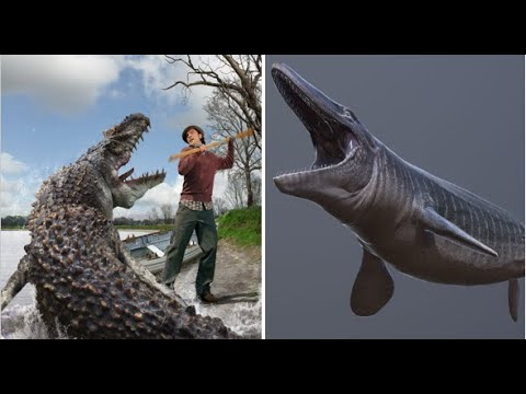 Download PRIMEVAL Creatures in real-life   Part-1