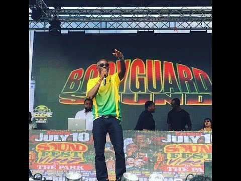 Irish and Chin Sound Fest 2016 Roy Wilkins Park (  Body Guard Sound )