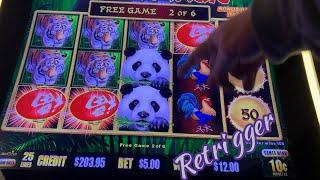 Gambar cover Panda Magic 11/15/19