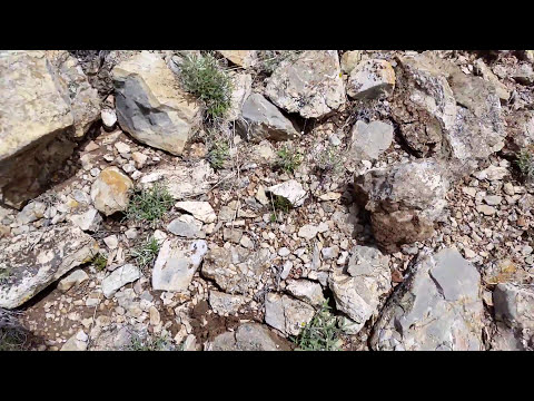 New Mexico prospecting with Lost Creek Mining