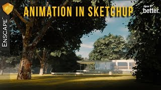 How to do an ANIMATION in Sketchup!!  Enscape 3d