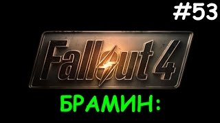 Fallout 4 - БРАМИН Страдаем фигней вконцебонус 53