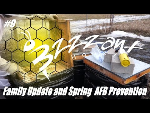 Family Update / Spring AFB Prevention !  - #9