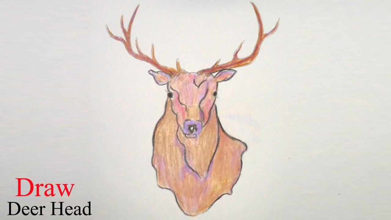 How to draw deer head step by step very easy