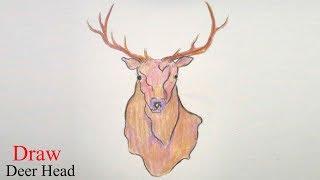 deer head easy drawing draw step skull face reindeer simple very drawings getdrawings paintingvalley elk