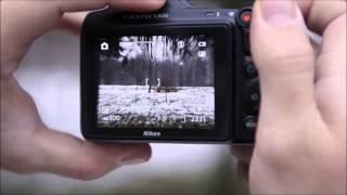 Цифровой фотоаппарат Nikon L820. Купить фотоаппарат Никон Л820.