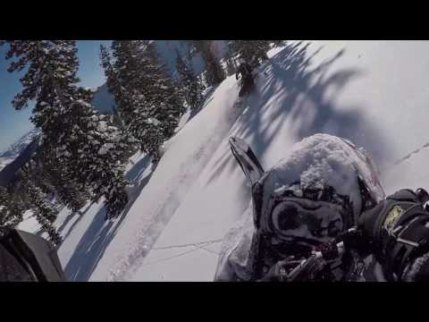 Greatest Powder Day! Snowmobiling In Tony's Grove, Utah With The Crew.