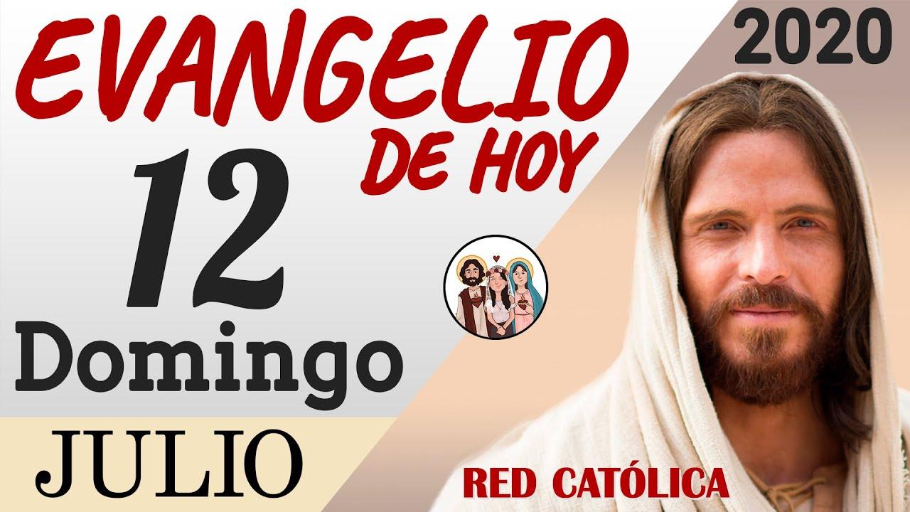 Evangelio de Hoy Domingo 12 de Julio de 2020   REFLEXIÓN   Red Catolica