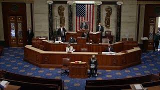In full: Representatives vote to impeach Trump for second time