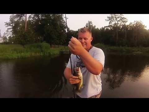 Bass Fishing At Live Oak Plantation