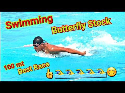 Swimming Butterfly Stroke Best Race In Hindi🏊♂️