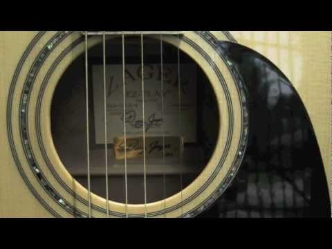 Zager Guitars Review