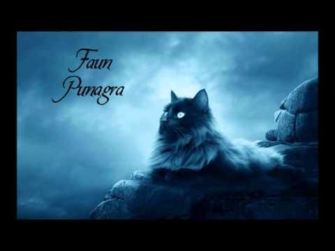 Faun - Punagra