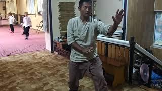车派形意拳Che style xingyiquan