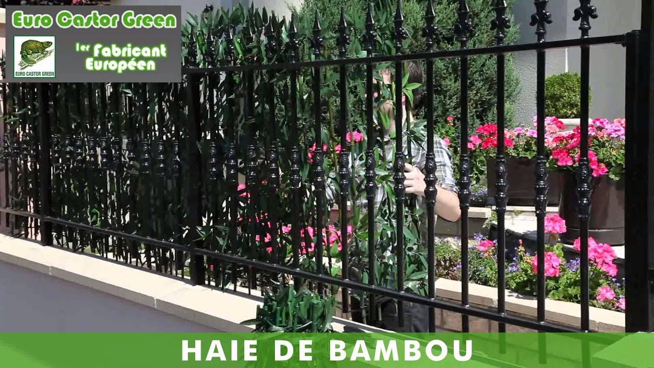 brise vue haie de bambou en pvc euro castor green youtube. Black Bedroom Furniture Sets. Home Design Ideas