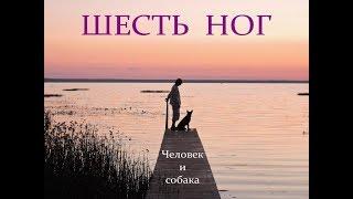 Автор ролика Виталий Тищенко. Шесть ног. Человек и собака