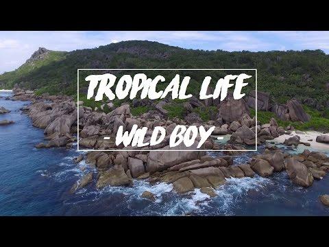 Tropical Life // Seychelles 2017 // WILD BOY