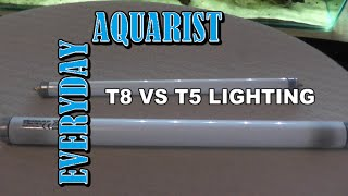 Difference Between T8 And T5 Aquarium Lighting Explained
