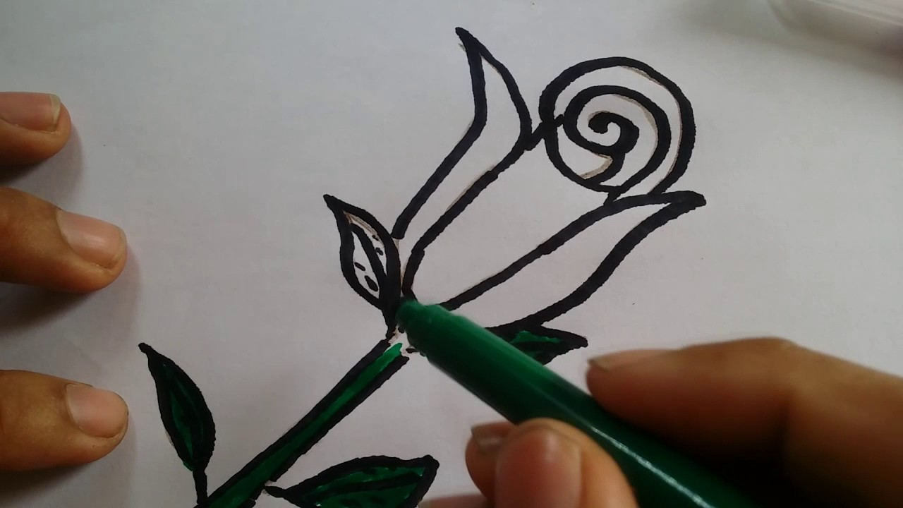 How to draw step by step flowers   Drawing of a flower   Drawing     How to draw step by step flowers   Drawing of a flower   Drawing roses