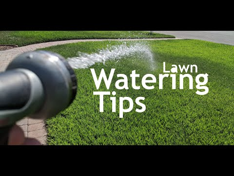 Watering Your Lawn Without A Sprinkler System | Best Lawn Sprinkler