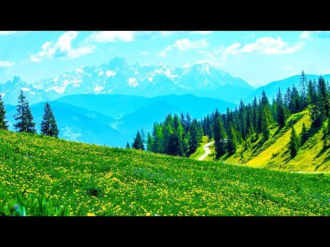 Relaxing Morning Music - Piano Music Background For Study, Yoga, Meditation (Honley)