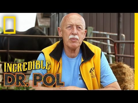 It's Time for a Refill  Season 2, Episode 1  Coffee Break With Dr. Pol