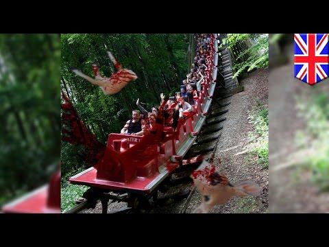 Roller coaster sa Europe, pinugutan ng ulo ang isang usang napadpad sa riles!
