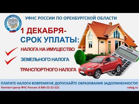 1 декабря-срок уплаты: налога на имущество