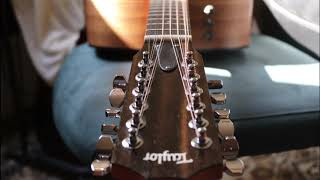 12 String, Taylor 150 e....never tried that...lets do it