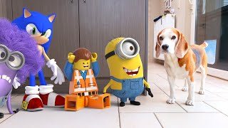 Minecraft , Minions & Angry Birds Animations In Real Life !!