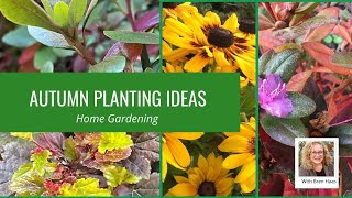 Sunrise with Autumn Color Planting Idea - V-log