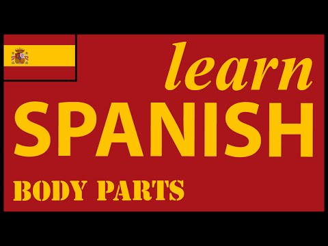Parts Of The Body In Spanish   Spanish Lessons For Learners
