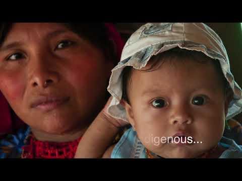 Reach Latin America: Journey To The Jungle