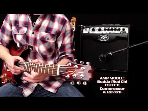Peavey Vypyr VIP - Multi Instrument Performance Demo