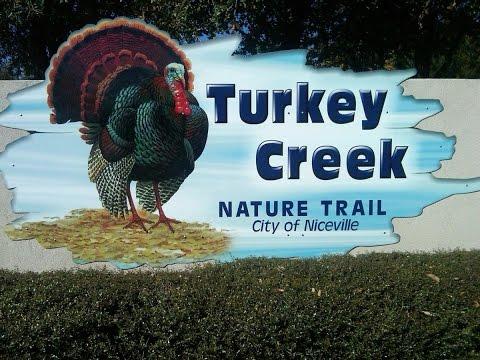 ASMR Turkey Creek Nature Trail Niceville Florida