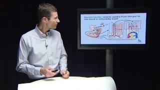 Novo Nordisk Challenge: an insulin tablet