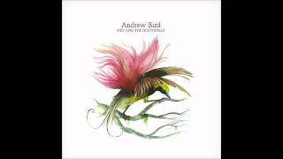 Song of the Day 8-28-12: See the Enemy by Andrew Bird
