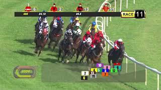 Vidéo de la course PMU PRIX COURSE 11
