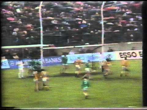 All Ireland Hurling Final 1973 (6 of 8)