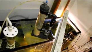 how to remove nitrates 7 different methods maintenance free aquarium